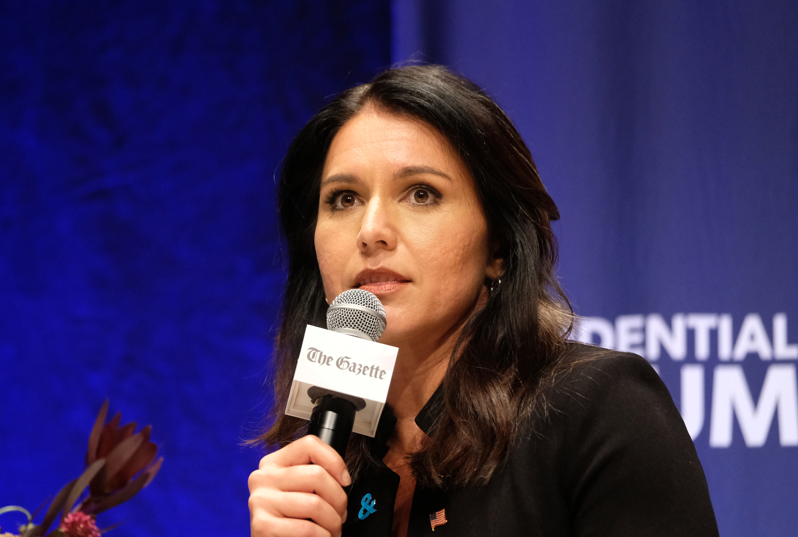 Democratic presidential candidate Rep. Tulsi Gabbard (D-HI) speaks at the Presidential Candidate Forum on LGBTQ Issues at the Sinclair Auditorium at Coe College on September 20, 2019 in Cedar Rapids, Iowa. (Photo by Alex Wroblewski/Getty Images for GLAAD)